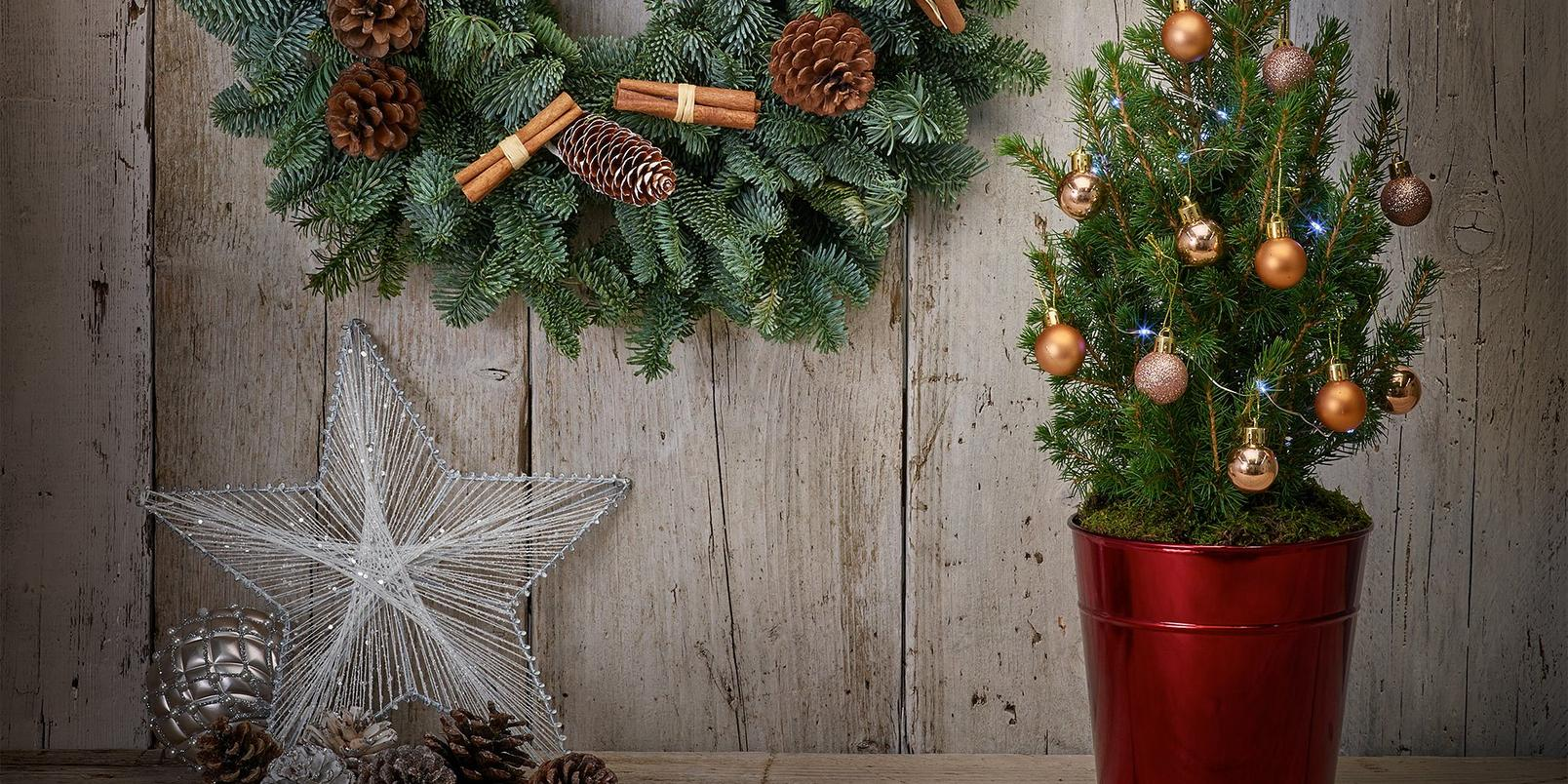 10-alternative-christmas-trees-small-spaces-5