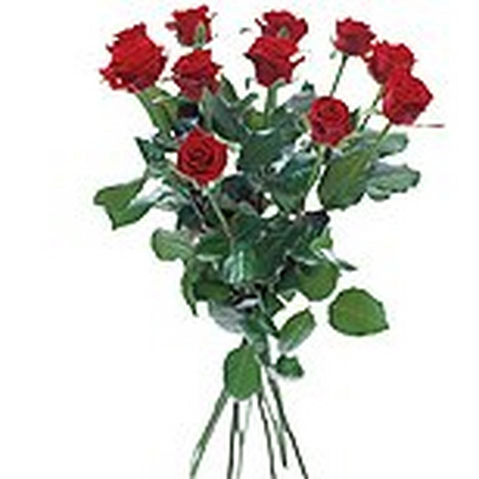 Image 1 of 1 of Bouquet with 12 red roses