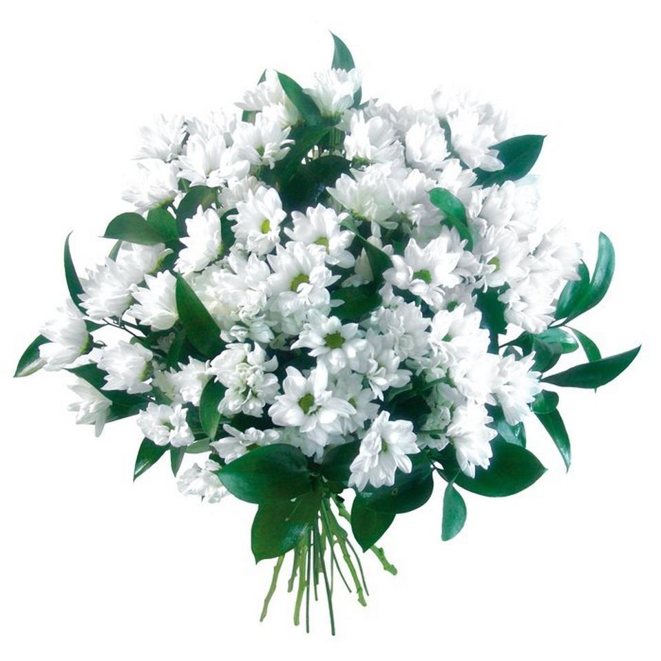 Image 1 of 1 of Condolences flowers