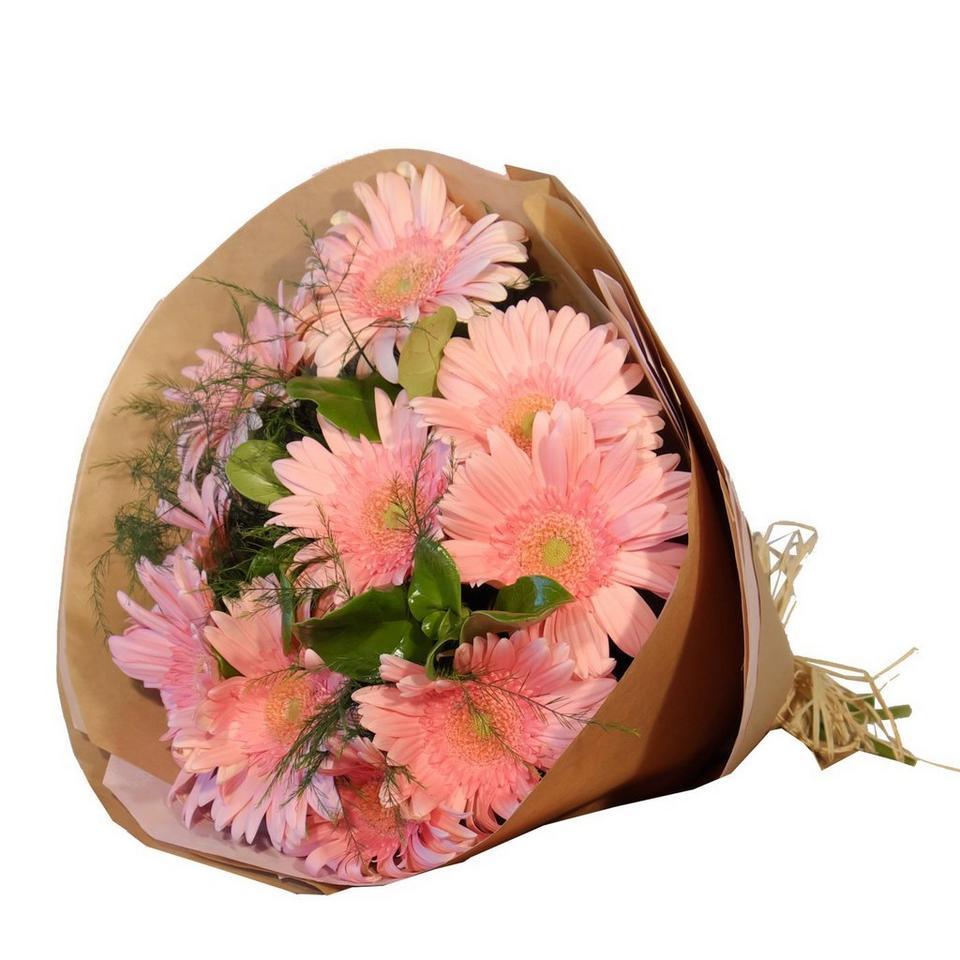 Image 1 of 1 of Gerbera Bunch - Pink