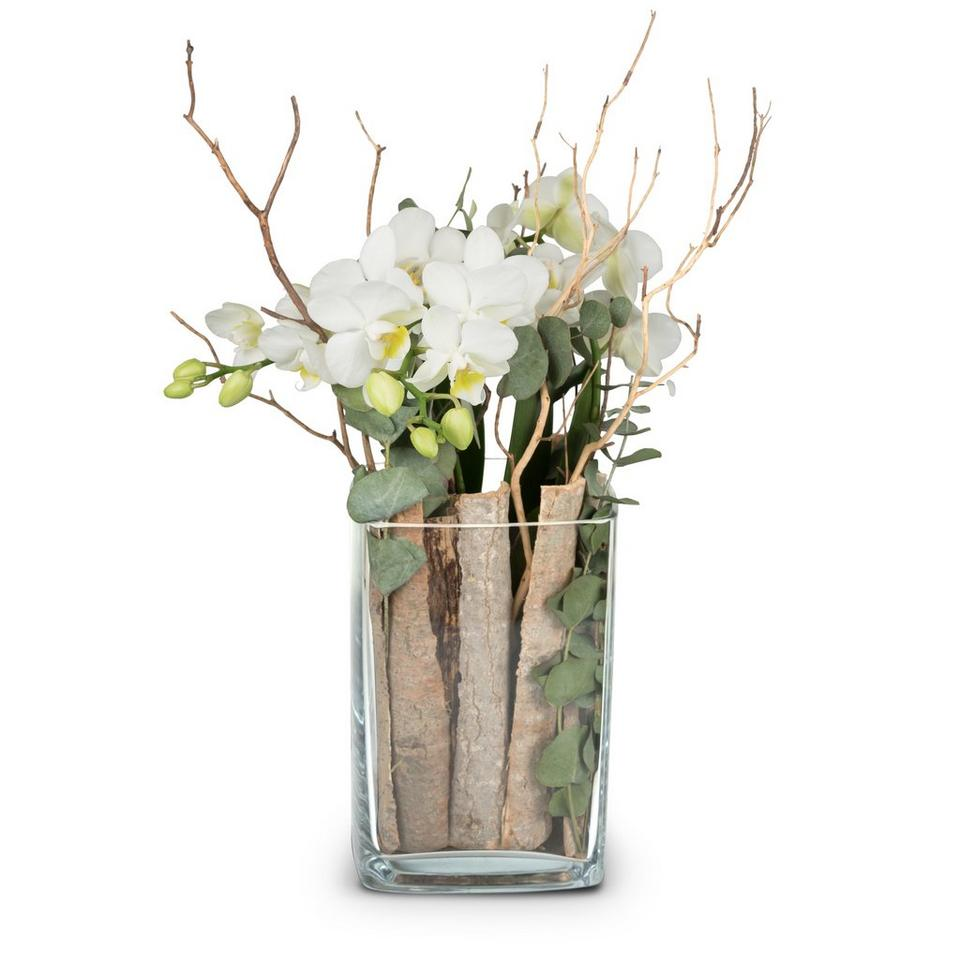Image 1 of 1 of Lifestyle (orchid in a vase)