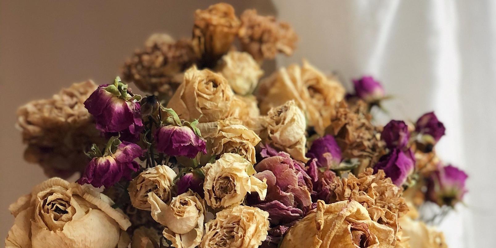 Dried-flowers