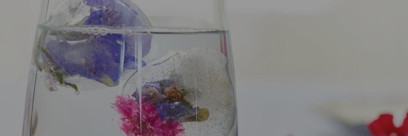 Floral-Ice-cubes-1