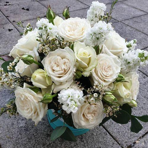 Jazlissa-Flowers-Clonee-Village