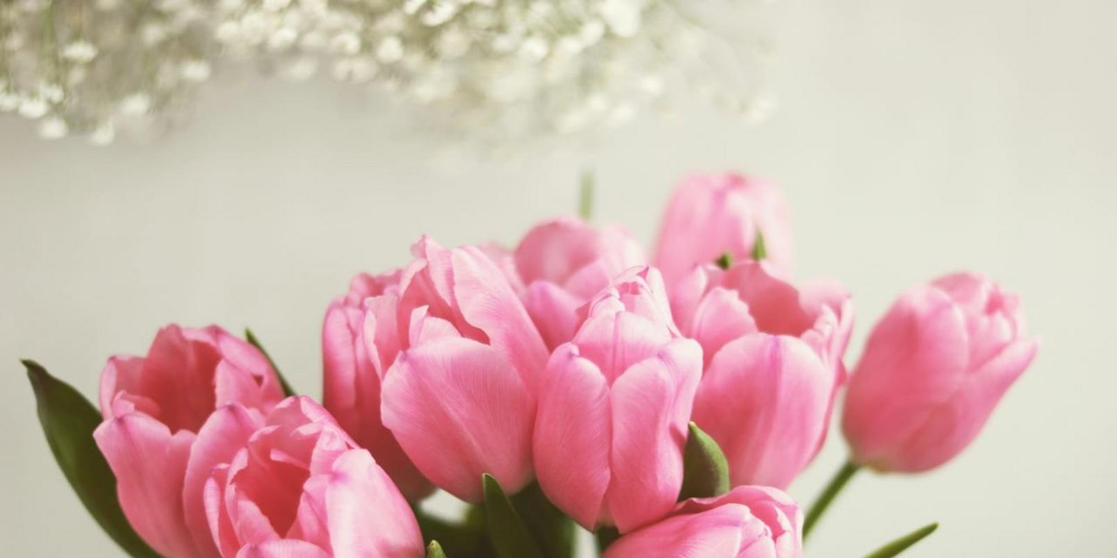 Pink-flowers-10