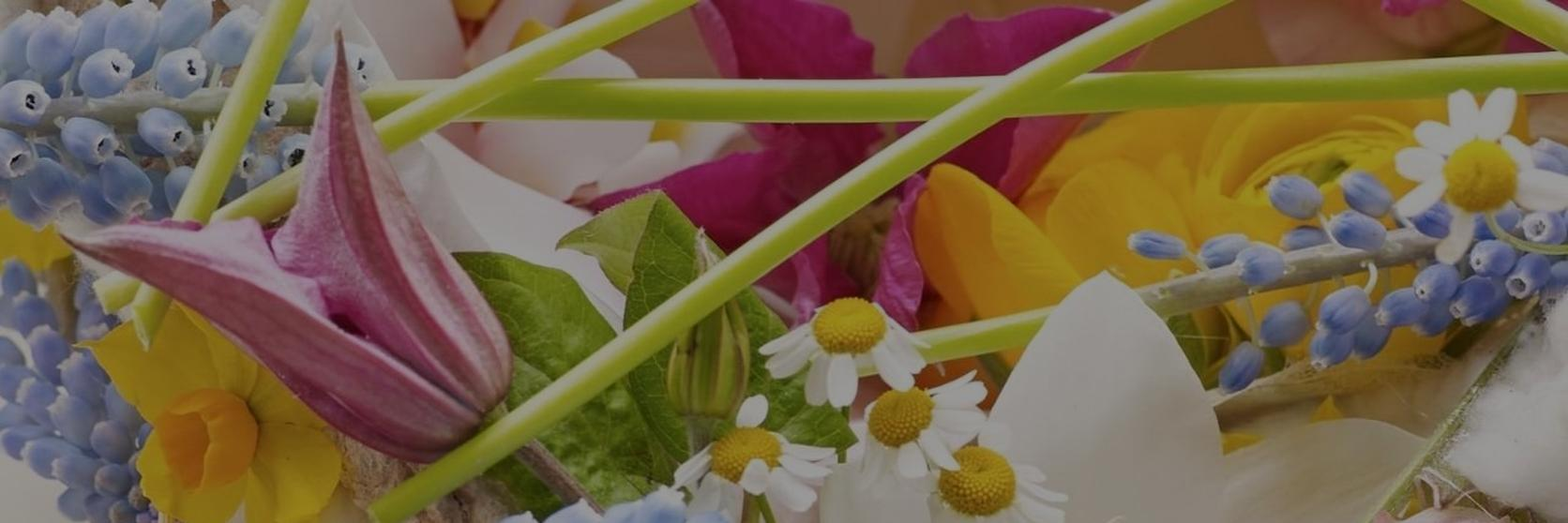 The_best_easter_flowers