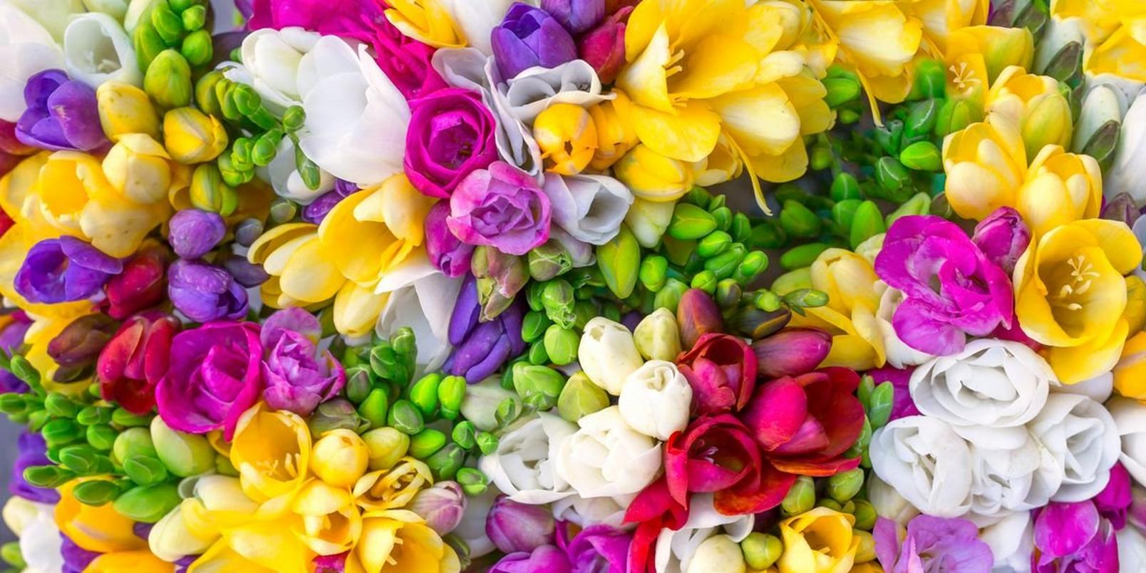 flowers-to-match-your-style-1