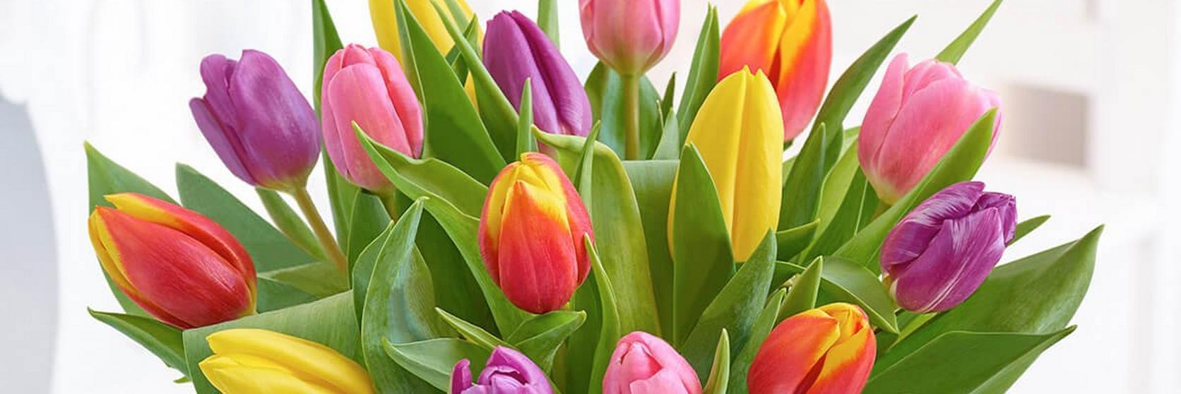 mixed-tulip-vase