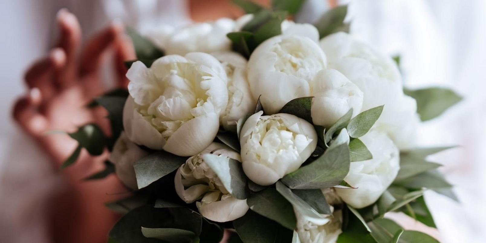 peonies-facts-that-may-surprise-you-2