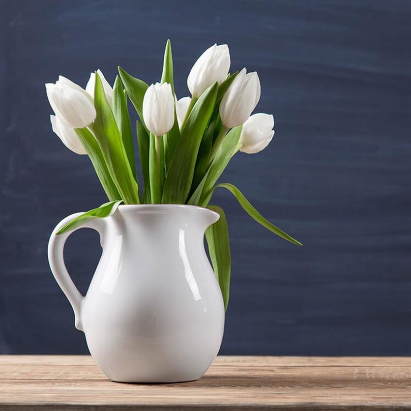 white-tulips-ultimate-flower